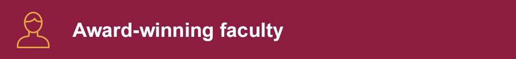 Award-winning faculty
